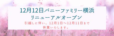リニューアルオープン 改装 バニーファミリー横浜 うさぎ専門店