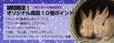 smallbana10bai.jpg