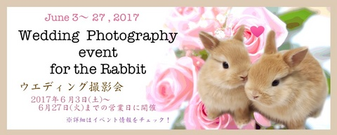 2017ウエディング撮影会.jpg
