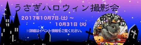 中央バナ2017ハロウィン.jpg