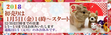 中央バナ2018初売り.jpg