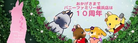 中央バナ10周年top.jpg