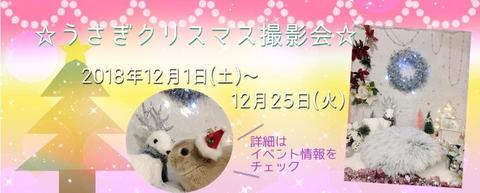 2018クリスマス撮影会1.jpg