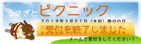 中央バナ2019うさピク2.jpg