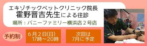 中央バナ2019霍野先生往診6月.jpg