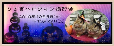 2019ハロウィン撮影会用.jpg