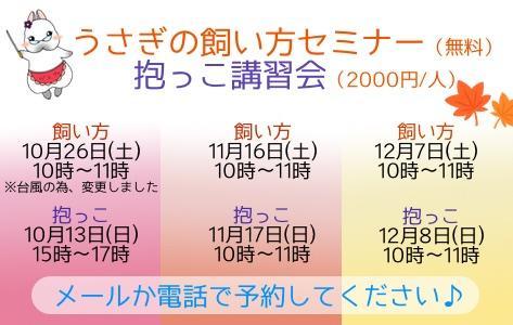 中央バナ2019飼い方抱っこ変.jpg