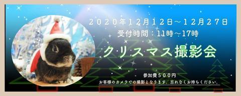 2020クリスマス撮影会.jpg