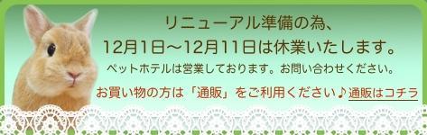 中央バナ休業の通販.jpg
